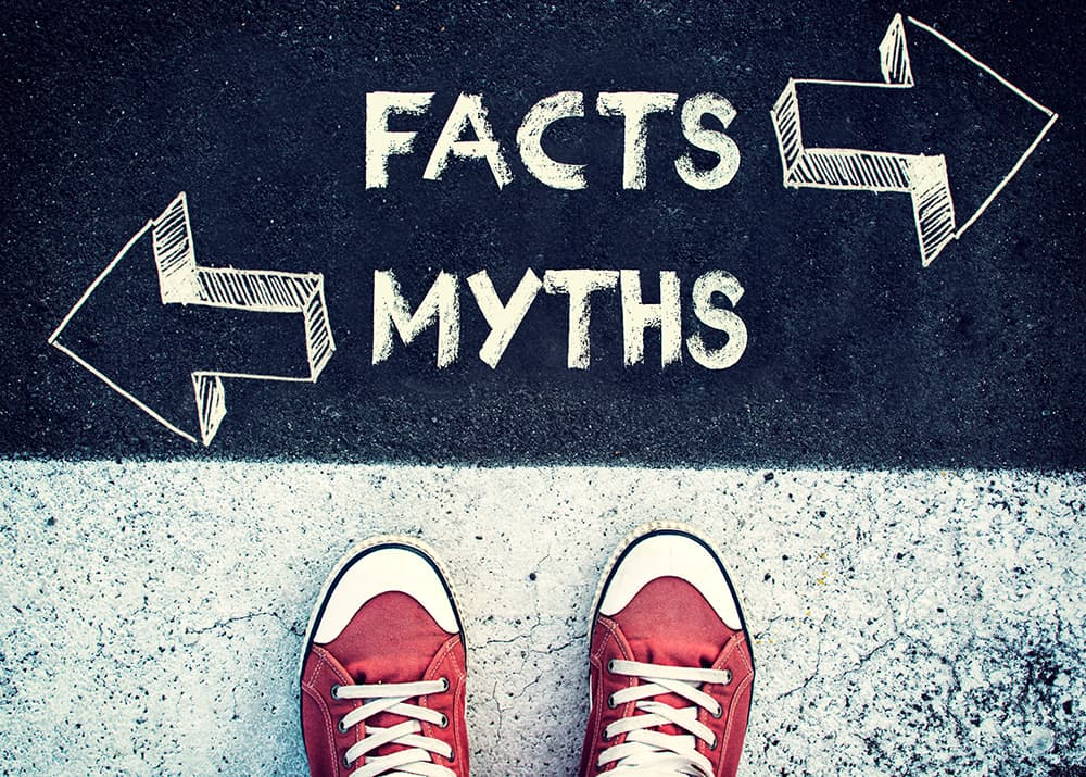 Myths and Facts written in chalk on ground